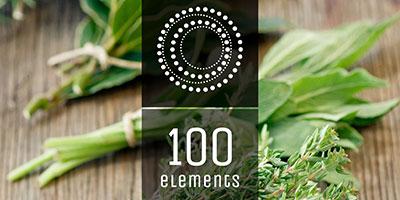 100 Elements