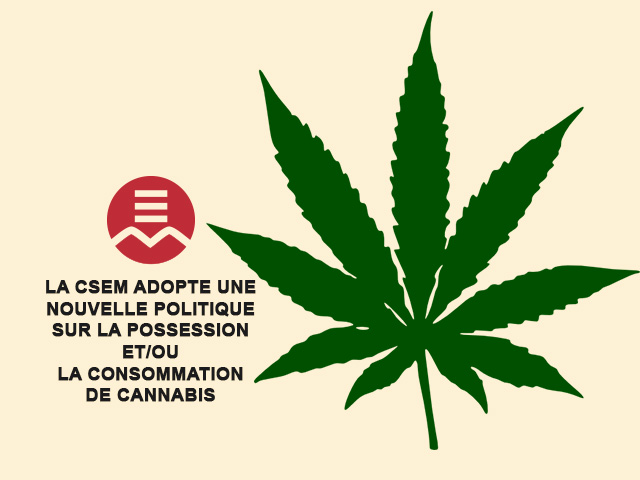 cannabis policy image