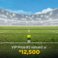 VIP Prize #2 valued at  $12,500