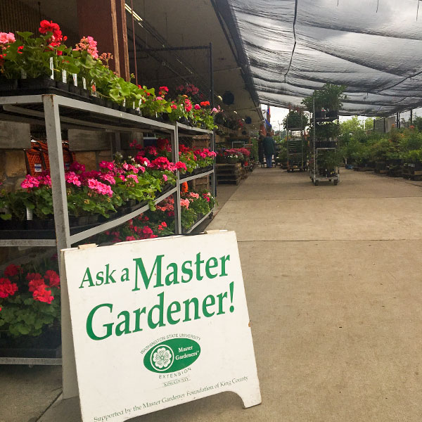 Ask a Master Gardeners