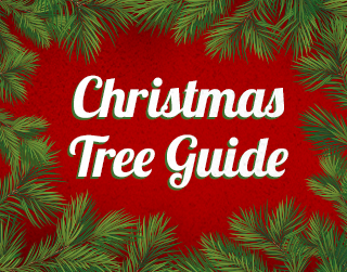 McLendon's Christmas Tree Buying Guide