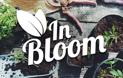 In Bloom Gardening Guide