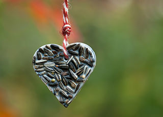 Bird Seed Valentine Ornament