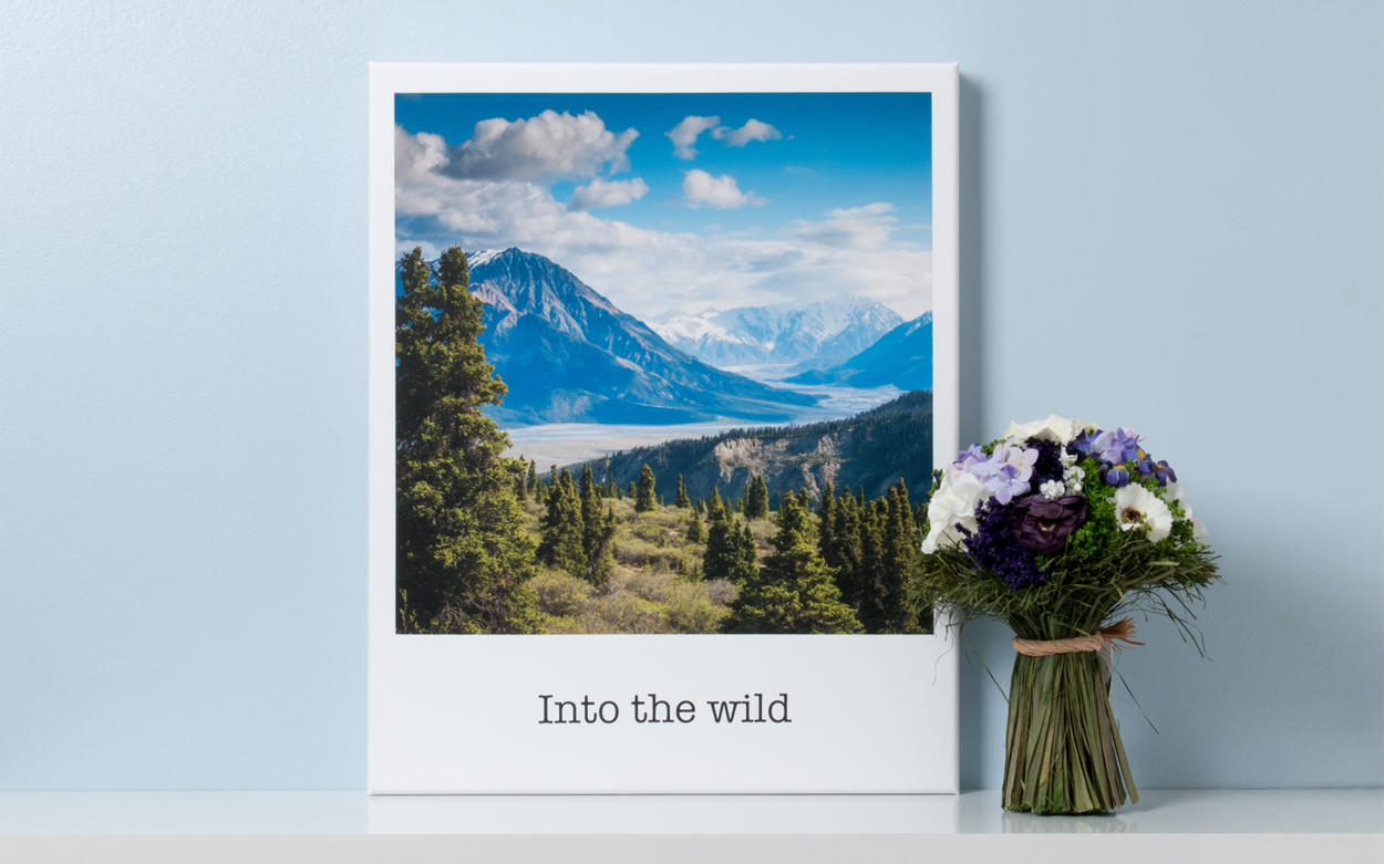 make your memories a reality with the new polaroid print store app