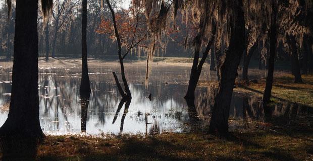 Floyds Pond