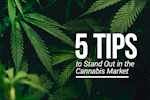 5 Tips to Stand Out in the Cannabis Market